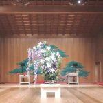 能・狂言・日本舞踊・現代舞踊「一粒萬倍 A SEED」2019舞台装花のご依頼